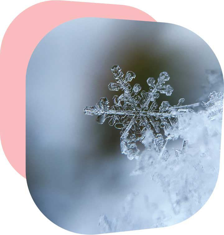 Bert_Winter.jpg